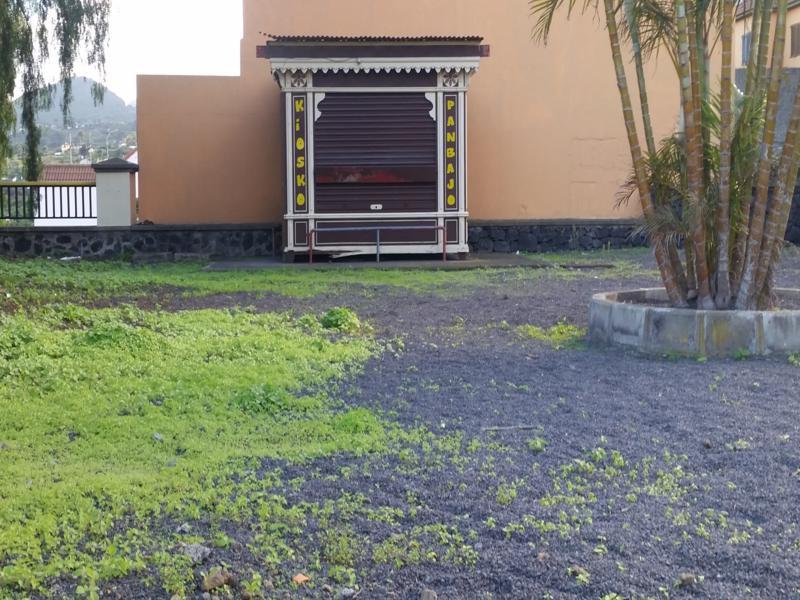 Quiosco Breu00f1a Alta (La Palma) 800x600