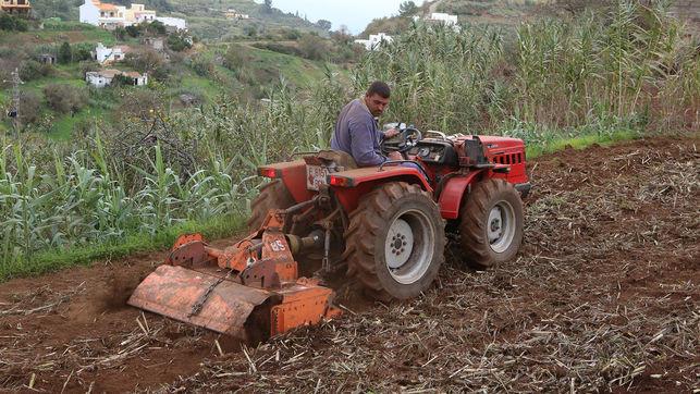 Agricultor trabaja Valleseco Gran Canaria EDIIMA20181013 0185 19